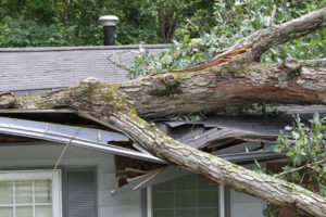 Minnesota Storm Damage Restoration Company - Elysian Construction