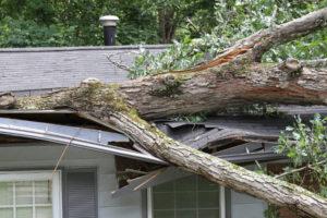 storm-damage-mn4